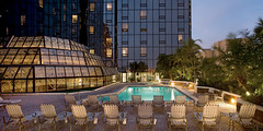 Hyatt Regency Tampa - Pool