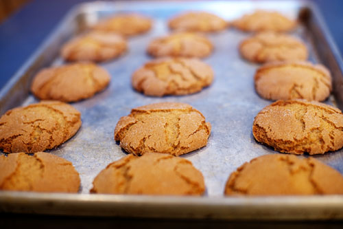 Spicy Molasses Cookies | The Pioneer Woman Cooks | Ree Drummond