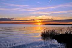 Sun setting over Oeresund - Dragoer, Denmark (OrangUtanSam) Tags: sunset sky cloud sun birds clouds denmark dragør skies copenhagenairport seabirds øresund dragoer redskies oeresund