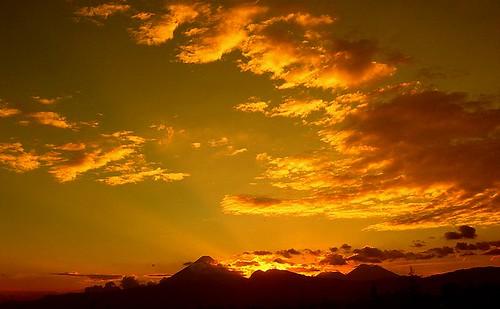 Golden sunset.