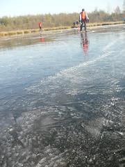 P1110081_r1 (EllenElemans) Tags: winter natuurijs schaatsendeflaes2008
