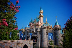 Disneyland - Sleeping Beauty's Castle (Matt Pasant) Tags: family flowers vacation holiday kids canon landscape outdoors day time personal outdoor 5photosaday 40d imagetype photospecs stockcategories canonef1635mmf28liiusm canon40d