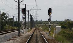 Concordância de Agualva (Erickson Júnior) Tags: semáforo sinal bal sinalização agualva poceirão concordânciadeagualva semáforoprincipal semáforoavançado semáforoavançadodecontravia