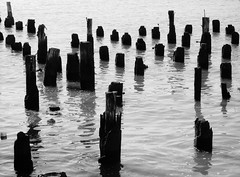 poles of depression revisited (somethingstartedcrazy) Tags: wood nyc white black water photography chelsea photos manhattan piers depression poles somethingstartedcrazyy