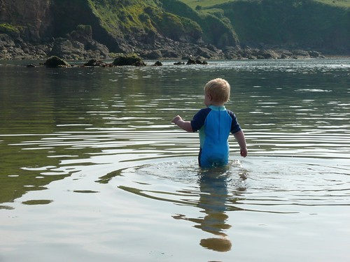 Wading out to sea!