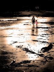 take my hand II (FoxyMcSlick) Tags: california pink seaweed beach sepia america foxy holding dad child hand unitedstates walk father pebble golfcourse carmel toned stroll foxymcslick mcslick