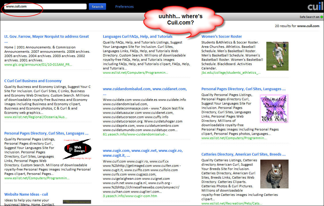 Cuil.com screenshot of a search for www.cuil.com
