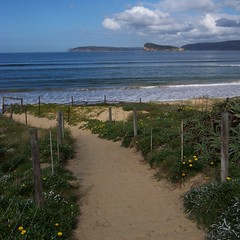 Umina Beach (Spikebot) Tags: australia nsw brisbanewater pc2257 auspctagged brokenbay uminabeach