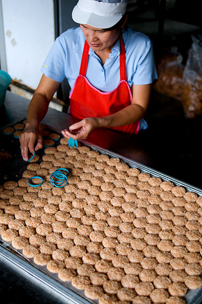 Pressing sticky rice into molds to be made into khao taen, rice cakes topped with palm sugar, Khun Manee, Lampang, Thailand
