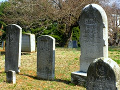 Old City Cemetery:  Gravemarkers