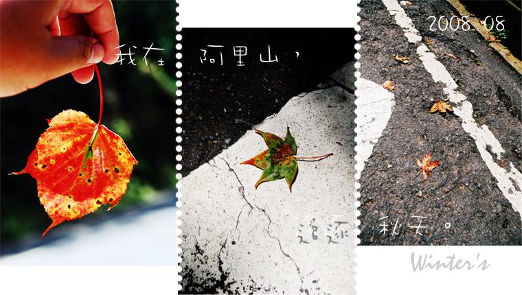 追逐秋天。-01