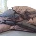Homonculus on cushions