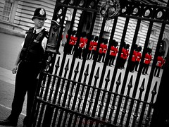 red light (tallawah75) Tags: red london gate uniform buckinghampalace soldiers thumbsup bobbie bigmomma changeoftheguard cruzadas cy2 challengeyouwinner ltytr2 ltytr1 ltytr3 a3b pfogold friendlychallenges diamondsawards starsawards thechallengefactory fotocompetition fotocompetitionbronze thepinnaclehof tphofweek27