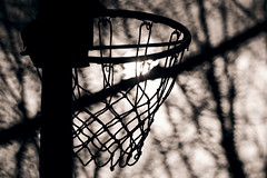 In the shadow (Balzs B.) Tags: trees shadow tree net basketball play