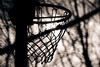 In the shadow (Balázs B.) Tags: trees shadow tree net basketball play