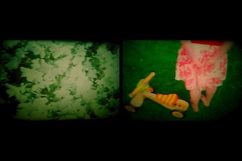"Robin Bernat's ""Real Lush: Short Stories"""