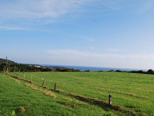 放眼望去是草原與海