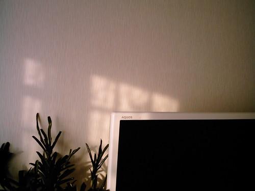 Light and Shadow4 (izone 550)