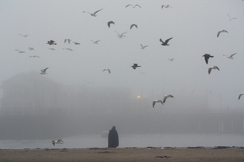 Woman in the Mist