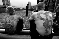 Double dragons (Ed-meister) Tags: white black tattoo dragon chinese hong kong triad