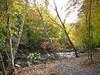 GAGA Creekside Sculpture Garden