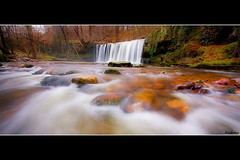 Sgwd Ddwli Uchaf (andrewwdavies) Tags: longexposure autumn trees winter cold wet water leaves wales river fun tripod cymru breconbeacons waterfalls uncomfortable powys pontneddfechan circularpolariser canonefs1022mmf3545usm ystradfellte brycheiniog autumnintowinter mossrocks abercraf coelbren canoneos40d abercrave andrewwilliamdavies afonneddfechan sgwduchafddwli bannaubrecheiniog pontmelinfach sgwdddwliuchaf