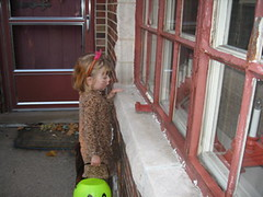 """""""Trick or Treat little bug..."""" (SQUISH!) (Aunt Sissy1) Tags: halloween waiting grace 2008 graces patiently"""
