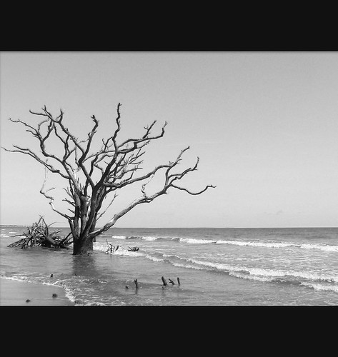 Botany Bay Plantation (Set) · South Carolina (Set)
