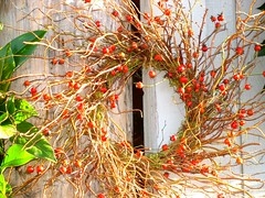 thanksgiving wreath (hopeisalot) Tags: friends red wonderful catchycolors garden thankyou natural mandala cranberry olympia wa iq thanksgivng breathtaking bellisima christmaswreath classa whitedoor happythanksgiving verypretty zk givingthanks bej amazingcapture november2008 ourwonderfulworld heartawards flickrgreen shiningstart easycampeacesavehuman berrywreath allkindsofbeauty photographersgonewild doubledragonawards mallmixstaraward dragonflyawards highqulaityimages thanksgivingwreath wreathondoor pacificnothrwest lovevreath halleluliahwreath praiselovehearthlife sweetwreath kindnesswreath givingwreath greatwreath herowreath bestwreath supplewreath thatissopretty wonderfulwreath congratulationsonawonderfulexplore mandalaofthanks