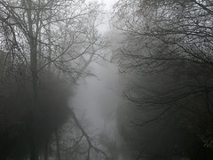The River (Andreas Lea) Tags: trees reflection nature water silhouette fog river mystical aarhus rhus g9
