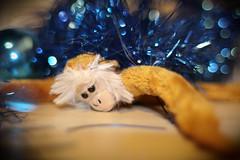 Monkey Monday - 36