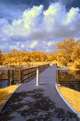 Pasir Ris Park (Dannie Tj. - ) Tags: singapore d70s infrared soe digitalcameraclub supershot platinumphoto colorphotoaward impressedbeauty theunforgettablepictures overtheexcellence earthasia rubyphotographer yourcountry goldieirfilter590nm