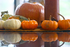 Thanksgiving Colors (jrwiener) Tags: thanksgiving turkey autumn harvest food spice lemon fruit family tradition celebration pilgrim