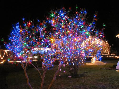 sparkling lights - Sparkling Christmas Lights