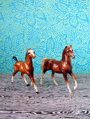 Gallop (kitschcafe) Tags: horses toy miniature brown tan plastic animal farm pony gallop homedecor decor8 designsponge apartmenttherapy upcycled cool fun drew dreworama dreworamacom sillyperson ohio kitsch midwest hipster vintage bohemian thrift modern kitschcafe etsy