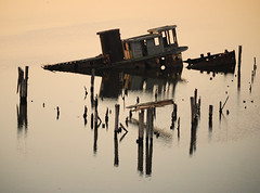 Sunken Tug Boat on Curtis Creek (IRainyDays) Tags: water boat sunkentugboatbaltimoremaryland