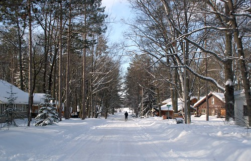 Snowy drive