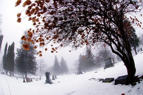 Winter cemetery