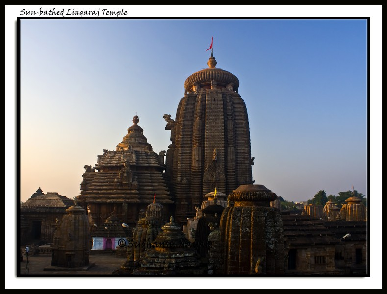 Sun-bathed Lingaraj Temple