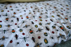 Thrifted Bug fabrics