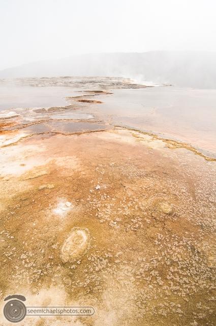 Yellowstone Day 1 52611 © Michael Klayman-017