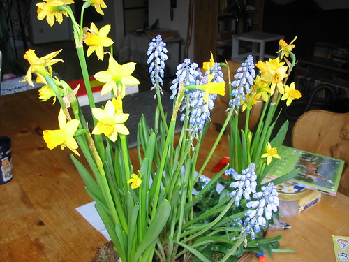 spring, glorious spring