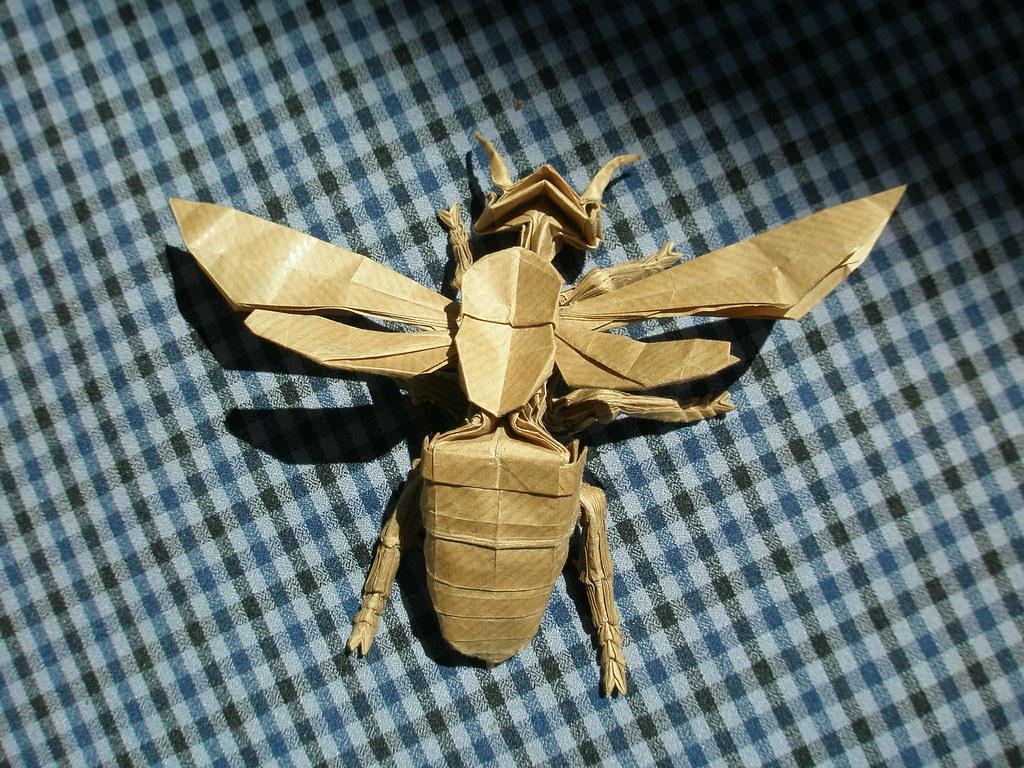 Wasp 26 By Kamiya Satoshi Folded Me Arturori Tags