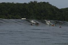 _ROY0020 (superbaddavidh) Tags: ocean santa roy catalina pacific surfing panama santacatalina berkovich
