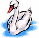 goose (3doel82) Tags: fish bird animals insect gambar koleksi ikan belajar burung binatang carnivora serangga mamalia amphibi