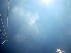 Pentax Optio W60 KAP Session # 2 (Wind Watcher) Tags: kite pentax optio kap dopero w60 windwatcher