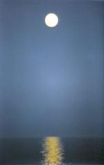 Luna llena en Torrevieja. (hace 20 aos) Fullmoon over Torrevieja. (20 years ago) (darkside_1) Tags: espaa azul scanner alicante torrevieja blueribbonwinner welcometomyworld escaner supershot mywinners myoldminolta ysplix theunforgettablepictures sergiozurinaga miviejaminolta bydarkside elaodelapera