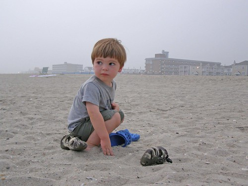 Little Guy discovers worlds largest sandbox