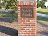 Ashley Woods, Cary, NC 001