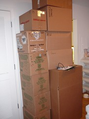 from the floor to the ceiling (alist) Tags: moving move alist boxes robison alicerobison ajrobison
